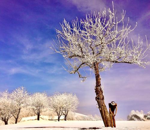 Winter auf dem Golfplatz