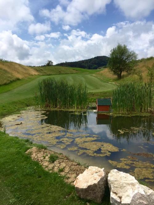 Teich bei Loch 4